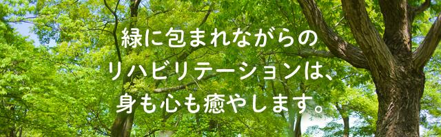 緑に包まれながらのリハビリテーションは、身も心も癒やします。